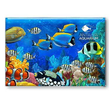 Aquapark Temalı Myros Dikdörtgen Magnet 80x55 mm - Thumbnail