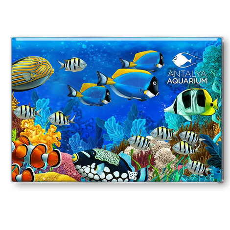Aquapark Temalı Myros Dikdörtgen Magnet 80x55 mm