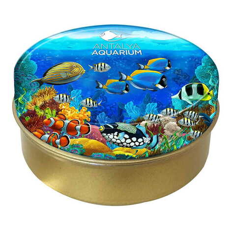 Aquapark Temalı Myros Yuvarlak Metal Kutu 73x35 mm