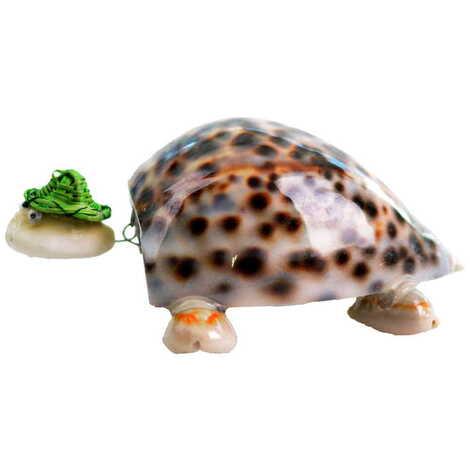 Deniz Kabuğu Şapkalı Kaplumbağa Biblo